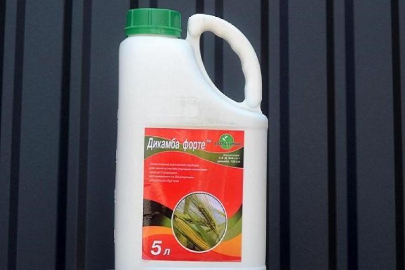 гербицид дикамба