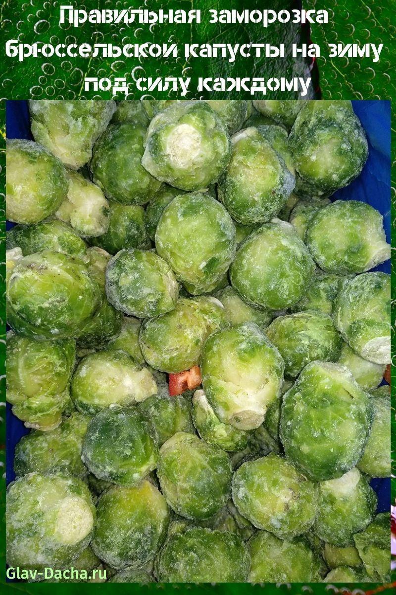 заморозка брюссельской капусты на зиму