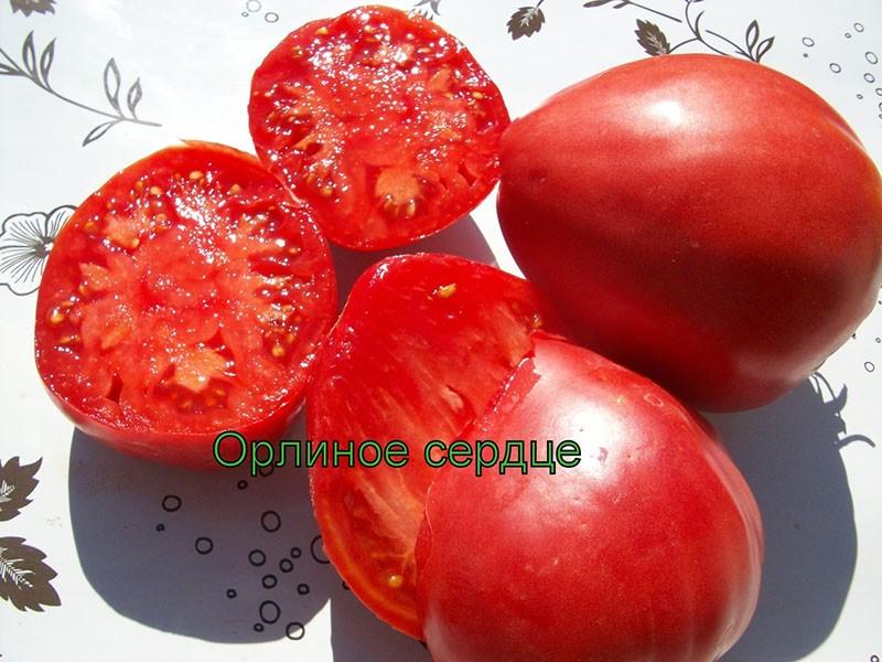 мясистые сладкие плоды томата