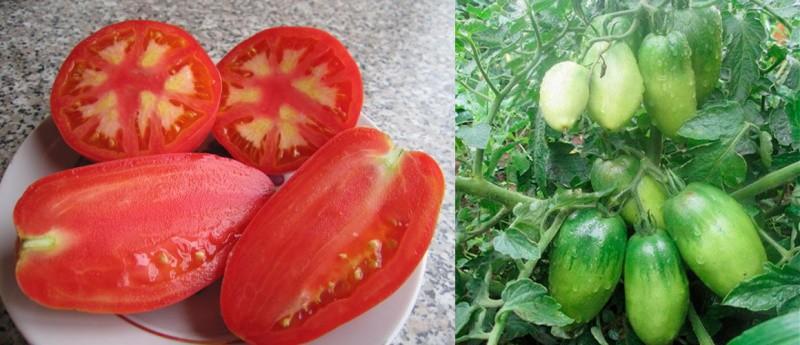 крупные мясистые плоды томатов