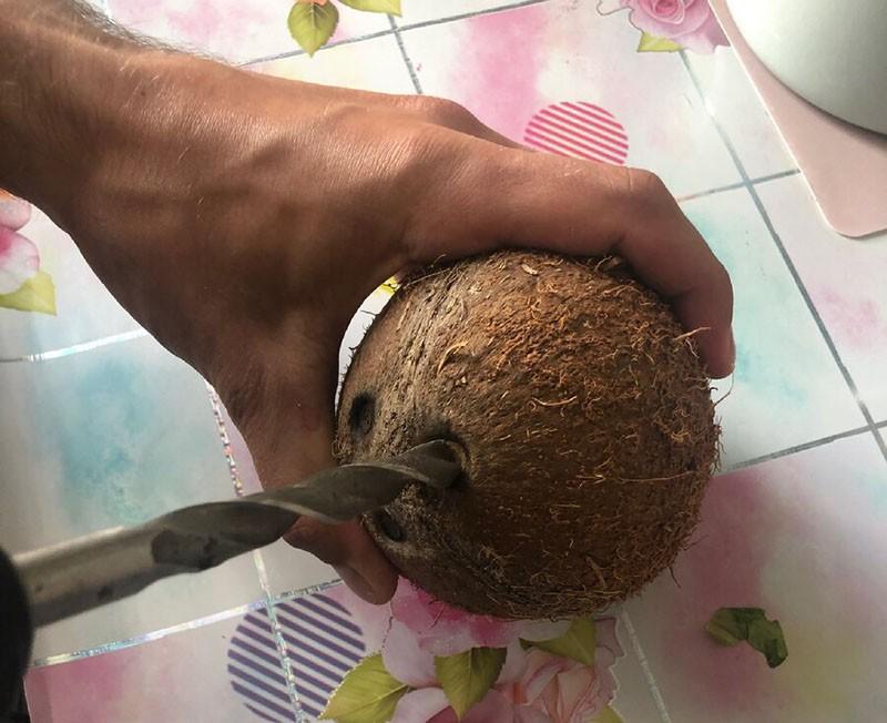 пробиваем дырки в кокосе
