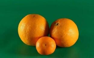 Битва фруктов — полезность апельсина и мандарина